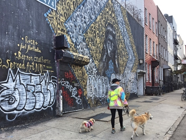 Bushwick streetart tour - Troutman Street Spread Art