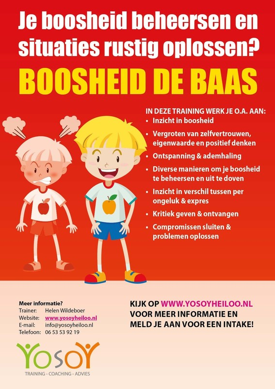Flyer Boosheid de Baas